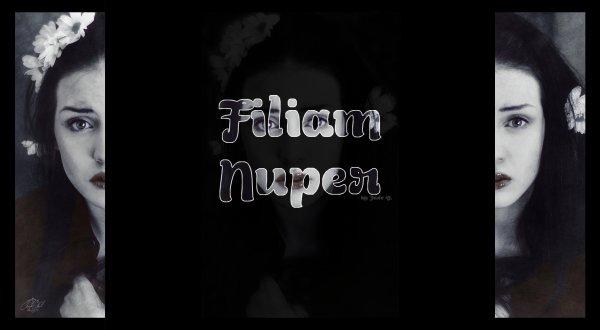 Commande effectuée par Filiam Nuper. (2)