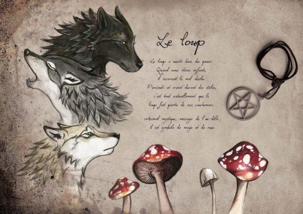 Le loup...