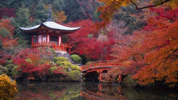 Trop beau comme paysage (Japon)...