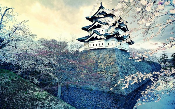 Image du jour : Le château de Hirosaki au Japon