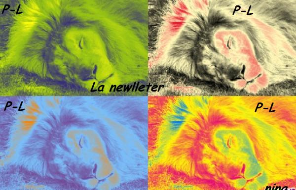 La Newlleter