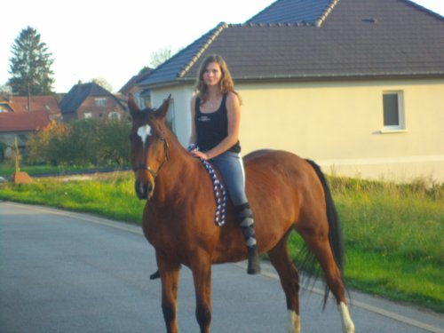 La base avec un cheval, c'est complicité et confiance