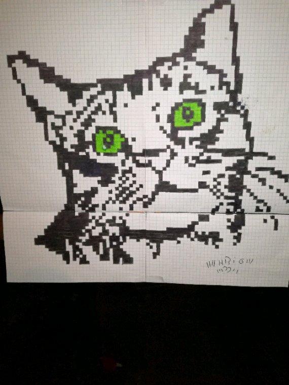 Chat au yeux vert