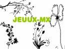 Photo de Jeuux-Mx