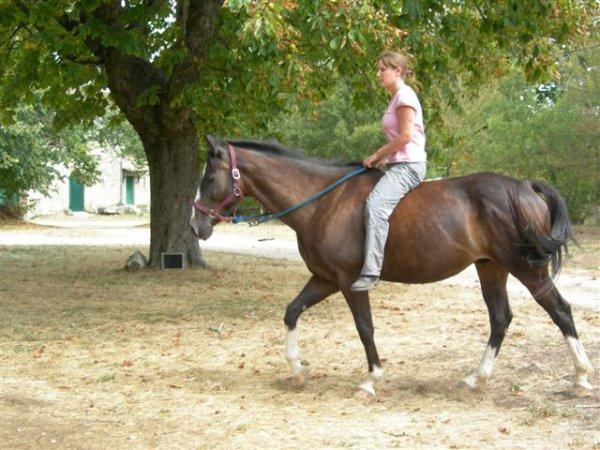 Fin juin 2010, elle est revenue dans la Drôme  pour me chercher et me garder avec elle. Elle devenait officiellement ma nouvelle propriétaire et m'emmenait vers des terres inconnues. Sur le Larzac, à l'élevage d'Aurière.