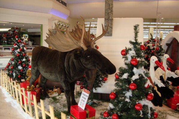 décor de  Noel  dans  un  magasin  du  Loiret