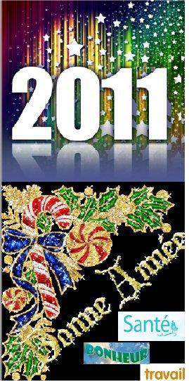 bonne  et  heureuse année  2011