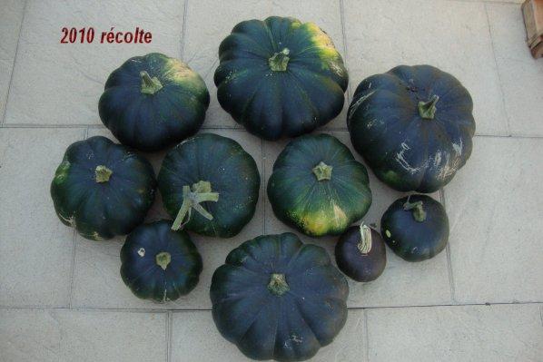 les récoltes de l'année  2010