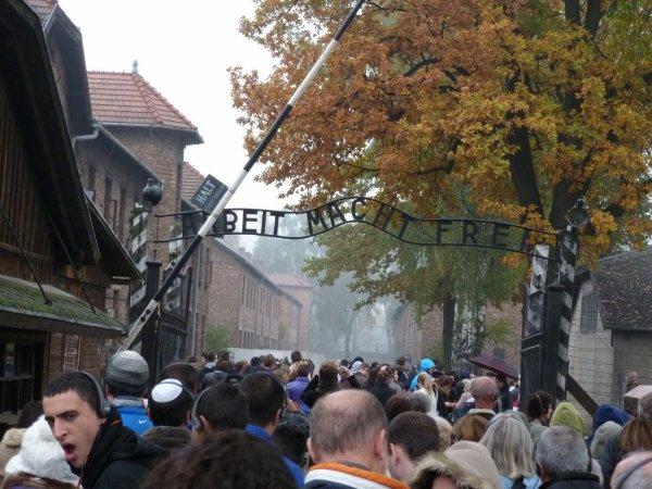 Auschwitz    voyage de mémoire
