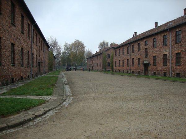 Auschwitz Birkenau      le camp