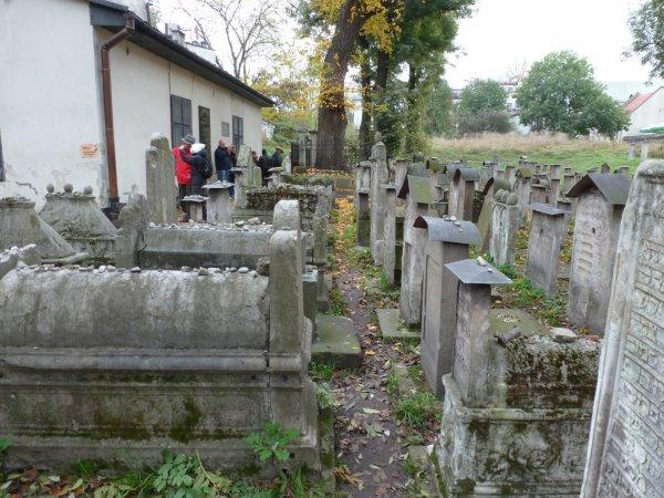 Auschwitz et ses environs
