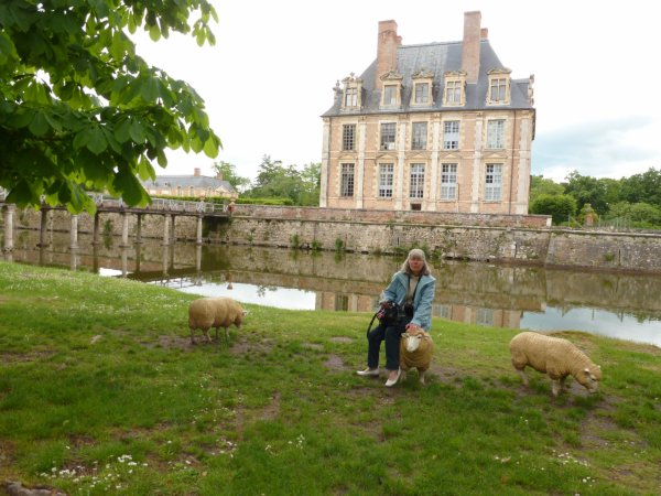 la Ferté Saint Aubin le château