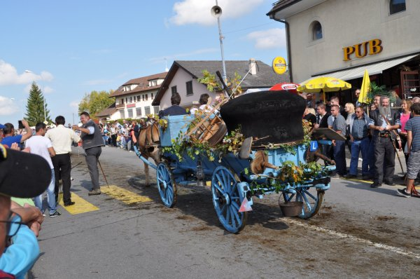 désalpes en Suisse 4
