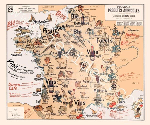cartes  murales   scolaires  de  la France