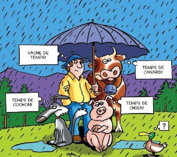 il pleut  ((  encore  !!))