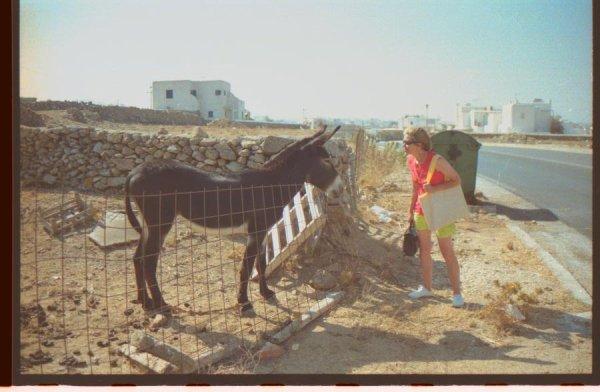 voyage en Grèce pour nos  50ans