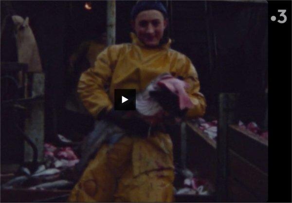 les  marins pêcheurs  ,  forçats de la mer