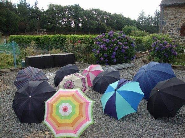 jolis  l'été  ,  utiles  l'hiver ,  inondations  .