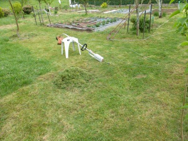 la  soit disant pelouse