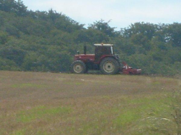 agriculture en Loraine