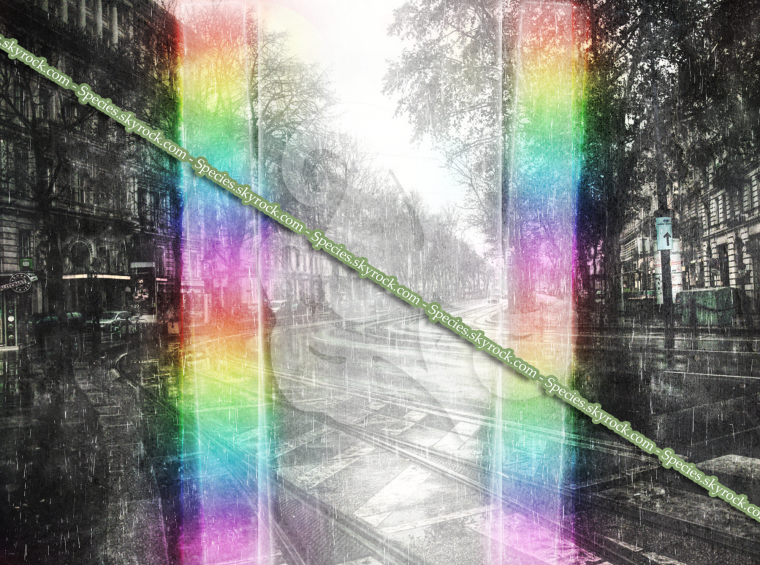 Habillage 5 - Pluie arc en ciel