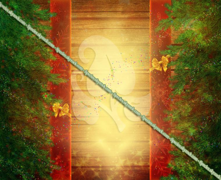 Habillage 12 - Cadeau de noël