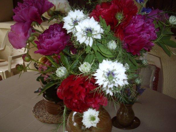 De jolies fleurs pour égayer cette journée plus que maussade