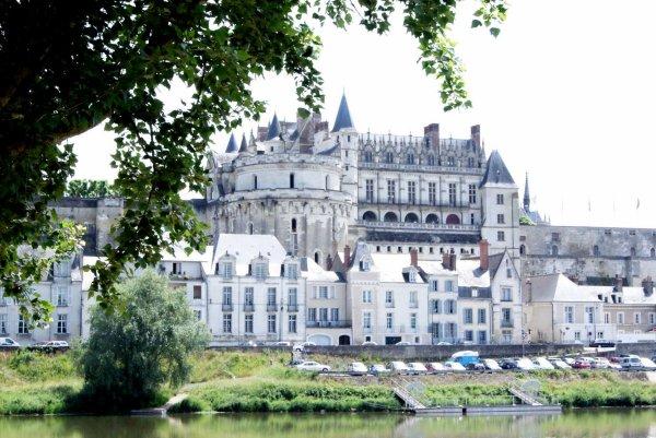 Photos de mes petites vacances au bord de la Loire - 3 -