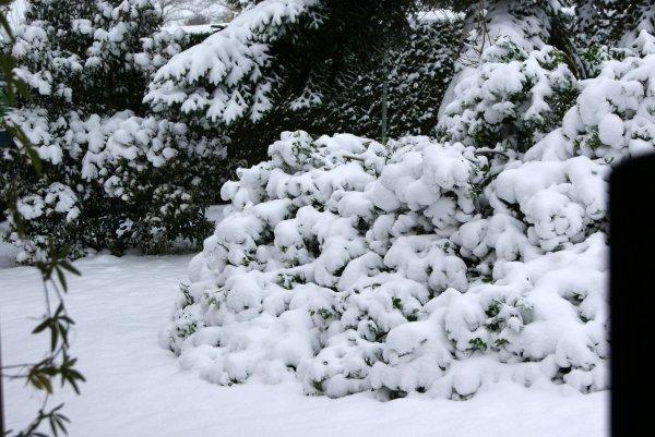 Toujours sous la neige chez nous dans l'Oise