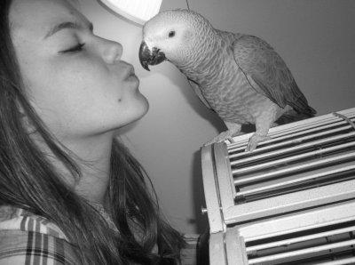 A défaut d'un chien, j'ai un perroquet ... ! :)