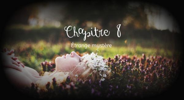 Chapitre VIII ~ Étrange mystère