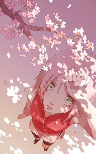 Fiction N°23 : LoveSakuraSasuke