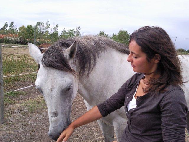 *** il n'y  a rien de plus beau qu'un cheval ***
