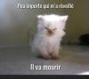 http://www.facebook.com/aivanotovascoot?ref=tn_tnmn