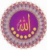 VIVE ALLAH