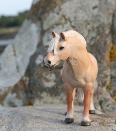 Concours poney