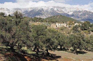 Kabylie, entre Haizer et Slim en allant vers Cemmas ou Tikejda