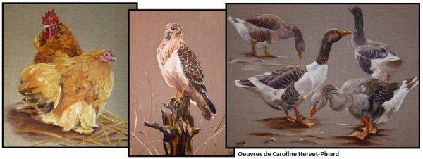 Nouvelles peintures de Caroline