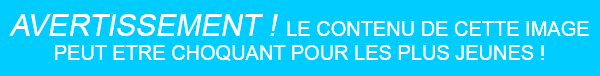 "Ce soir c'est ""Chaud the night"" !"