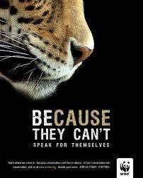 Le WWF...