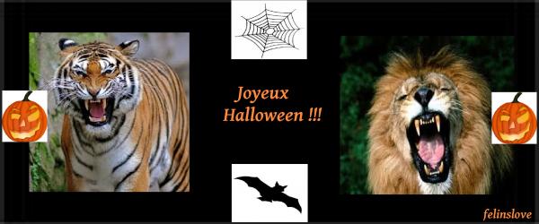Montage pour Halloween !!