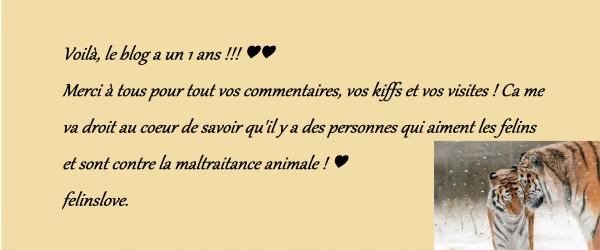 ♥♥ Le Blog a eu 1 an le 6 Décembre 2013 ! ♥♥