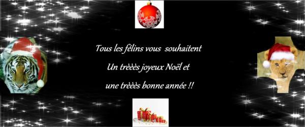 ♥♥ Joyeux Noël & Bonne Année !!! ♥♥
