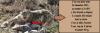 Un GPS sur un léopard des neiges....