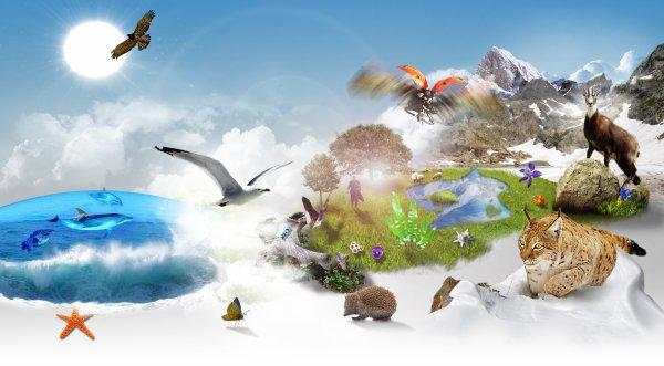 ❀La biodiversité, un trésor sur Terre... qu'il faut conserver...❀