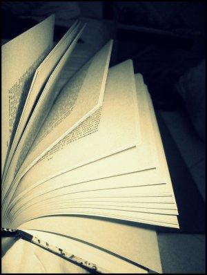 12 janvier 2012, 18h46  Forgiveness
