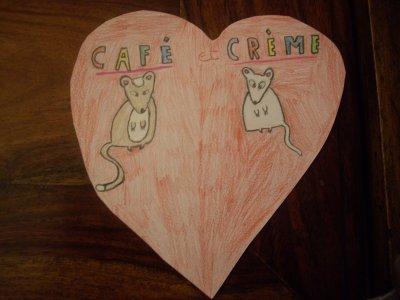 Café & Crème <3