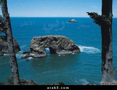 on voi ici une roche qui prie on peu dire que c 1signe de dieu pr que nous prenant l exemple