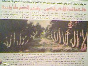 Une allée d'arbres atteste qu'il n'y'est de Dieu que Dieu et ke Mohamed est son messager