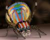 araignees-paon